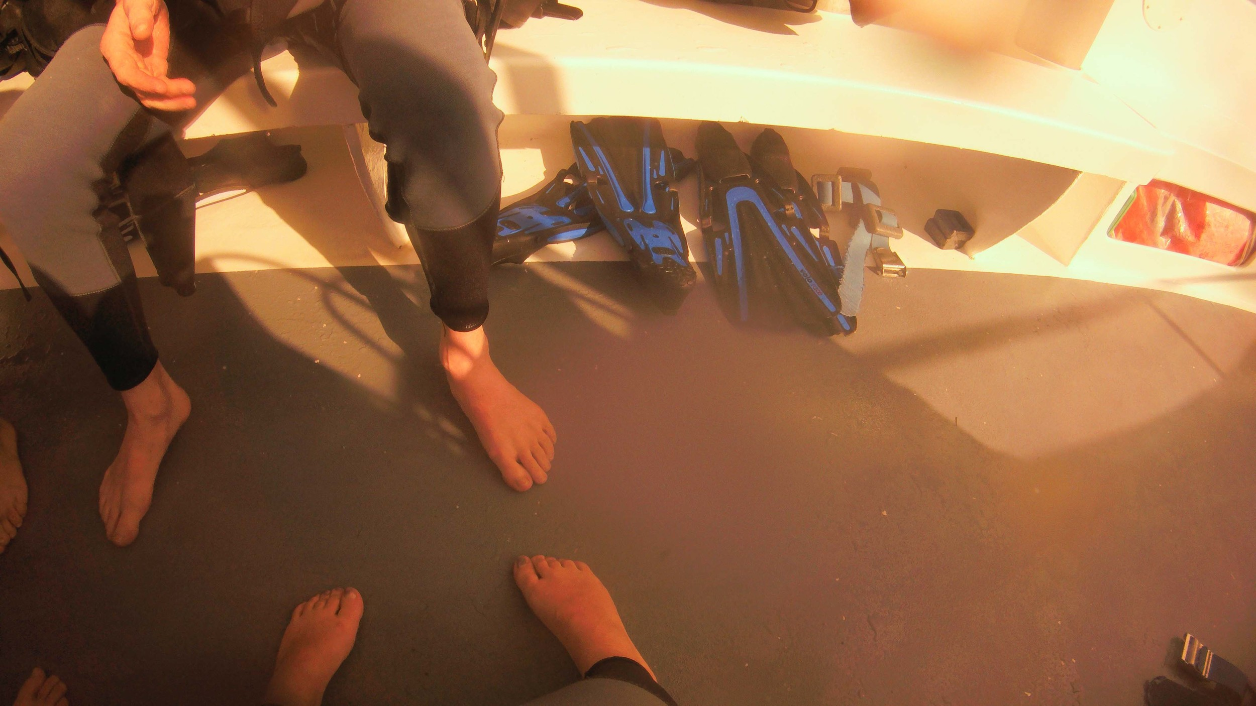 On the Dive Boat