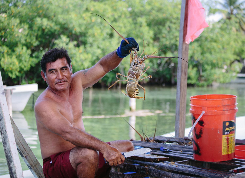 Fisherman selling lobster