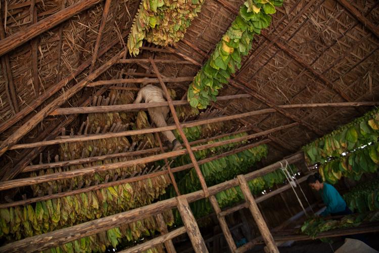 Cuba Blog Hor-2-3.jpg