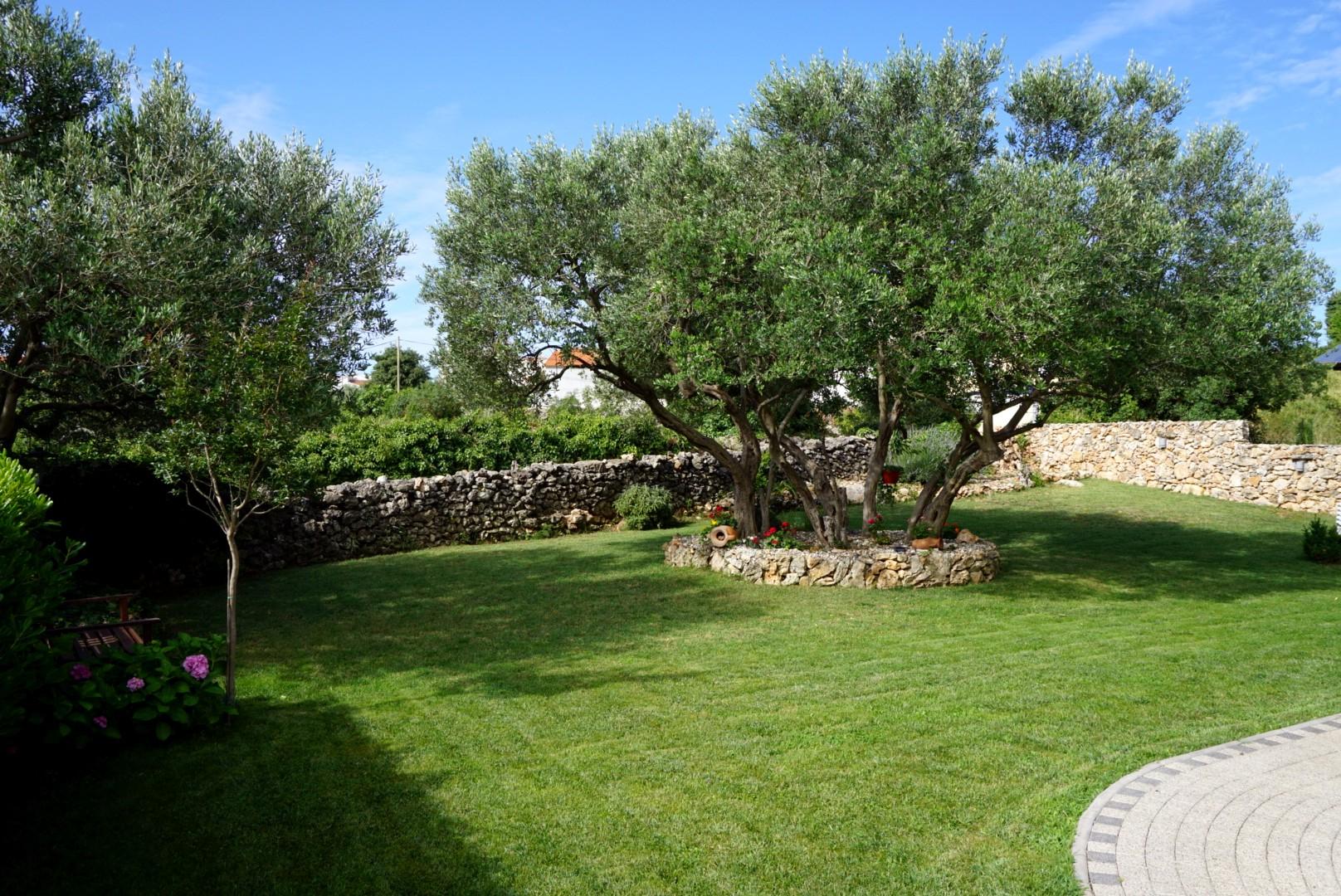 Hagen på Villa Valdres.jpg