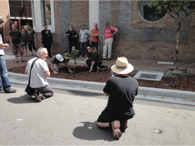 Mayor Clover Moore planting a fruit tree in Myrtle St Chippendale, a strong supporter of our road gardens and urban farming