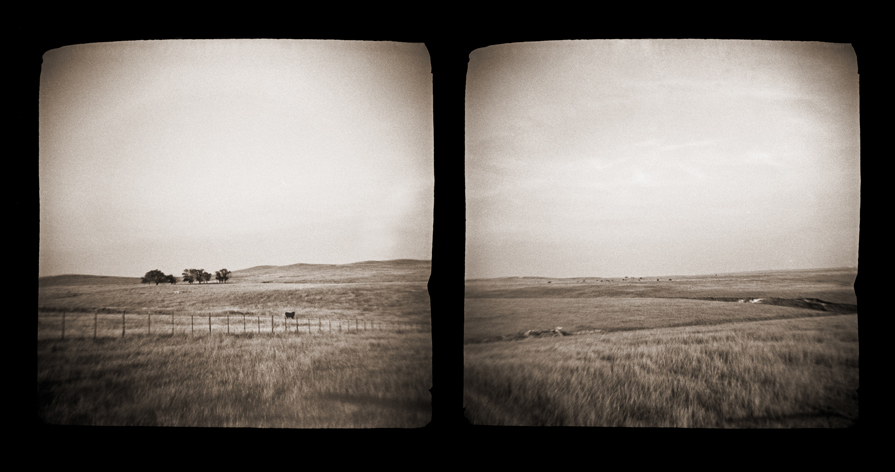 prairie004.diptych.jpg