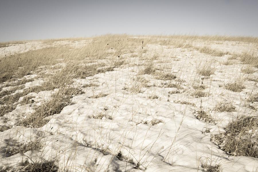 Prairie.079.jpg