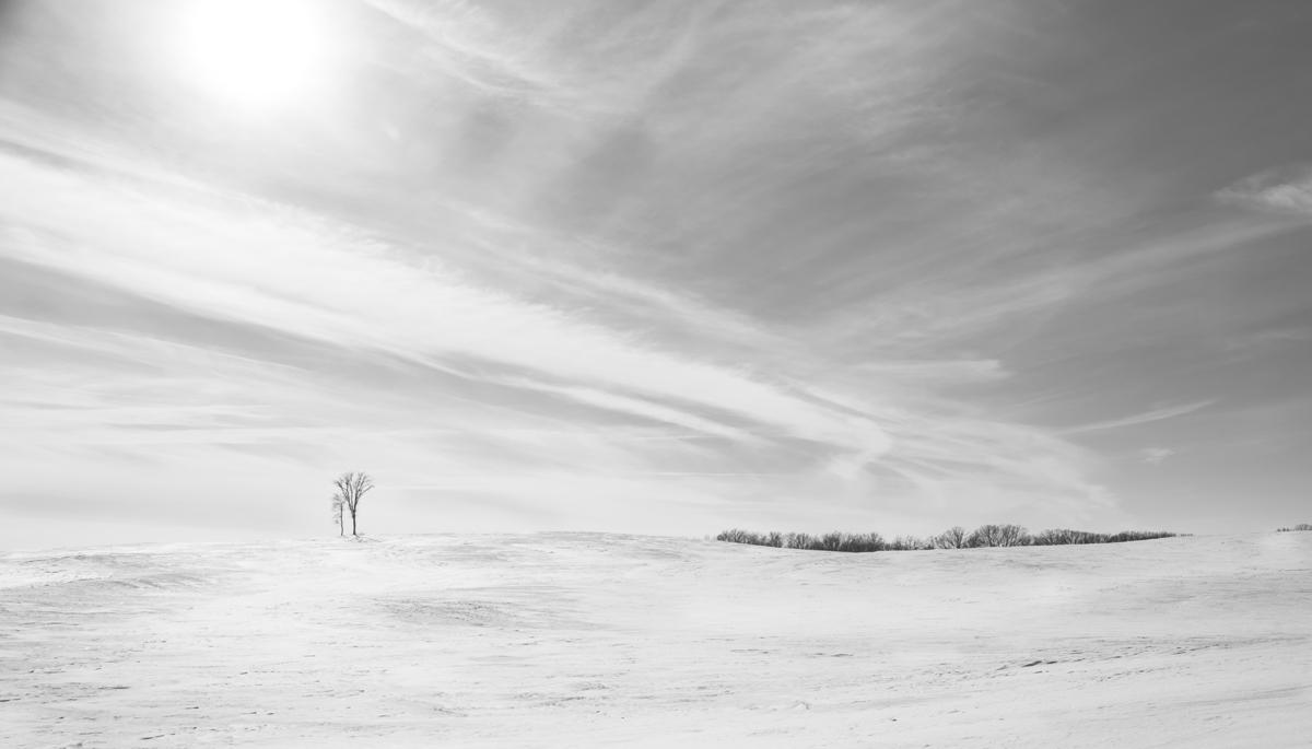 Prairie-9819.jpg