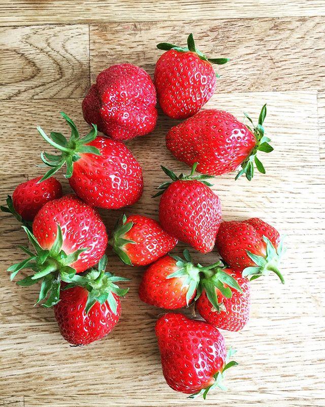 Les premières #fraises #bio #jardin #fruit #local