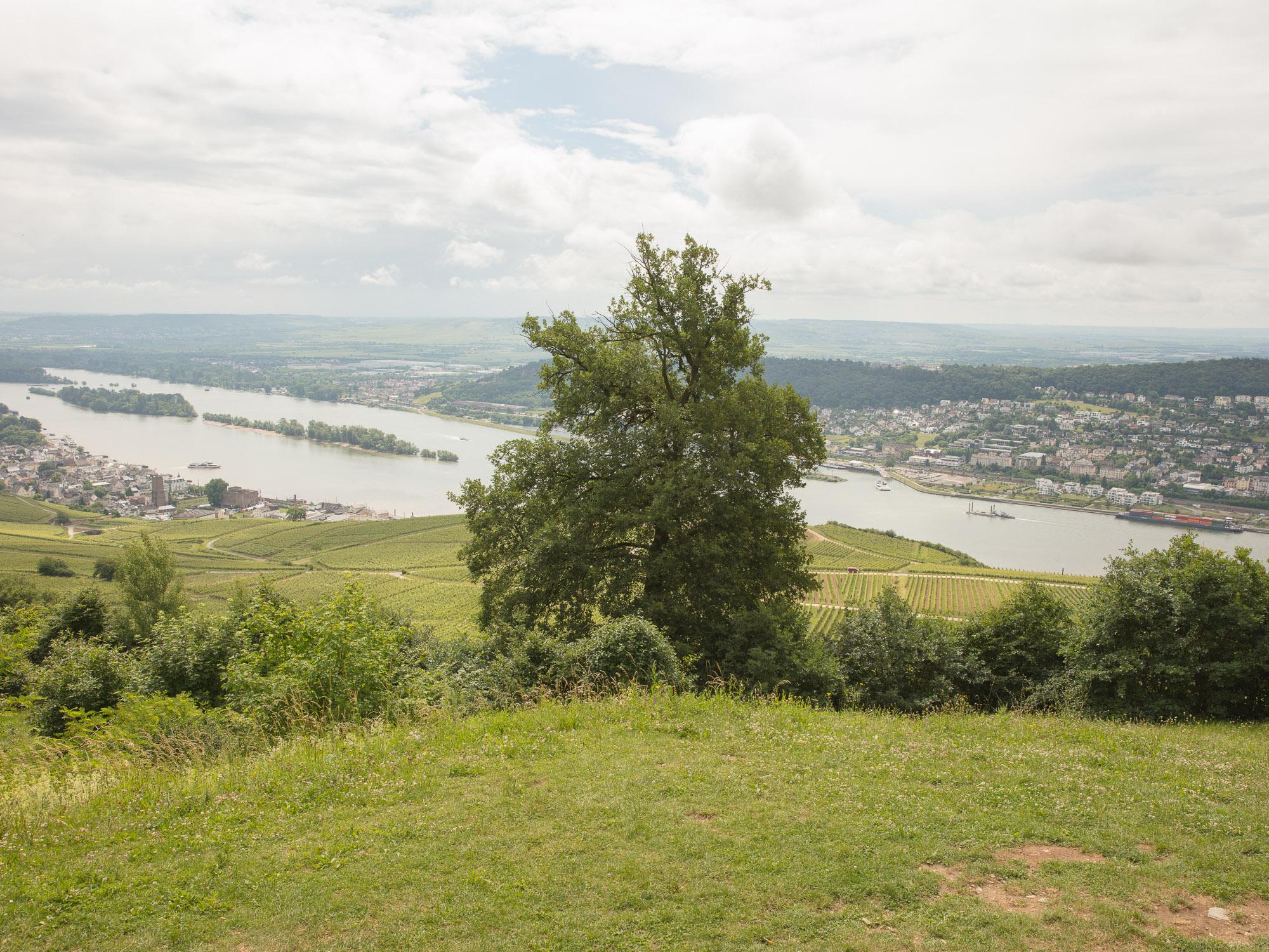 Jamie Kripke_Down the Rhine_26.jpg