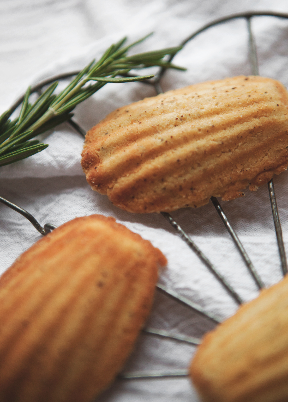 Sweet-Lemon-Rosemary-Madeleines_02.jpg