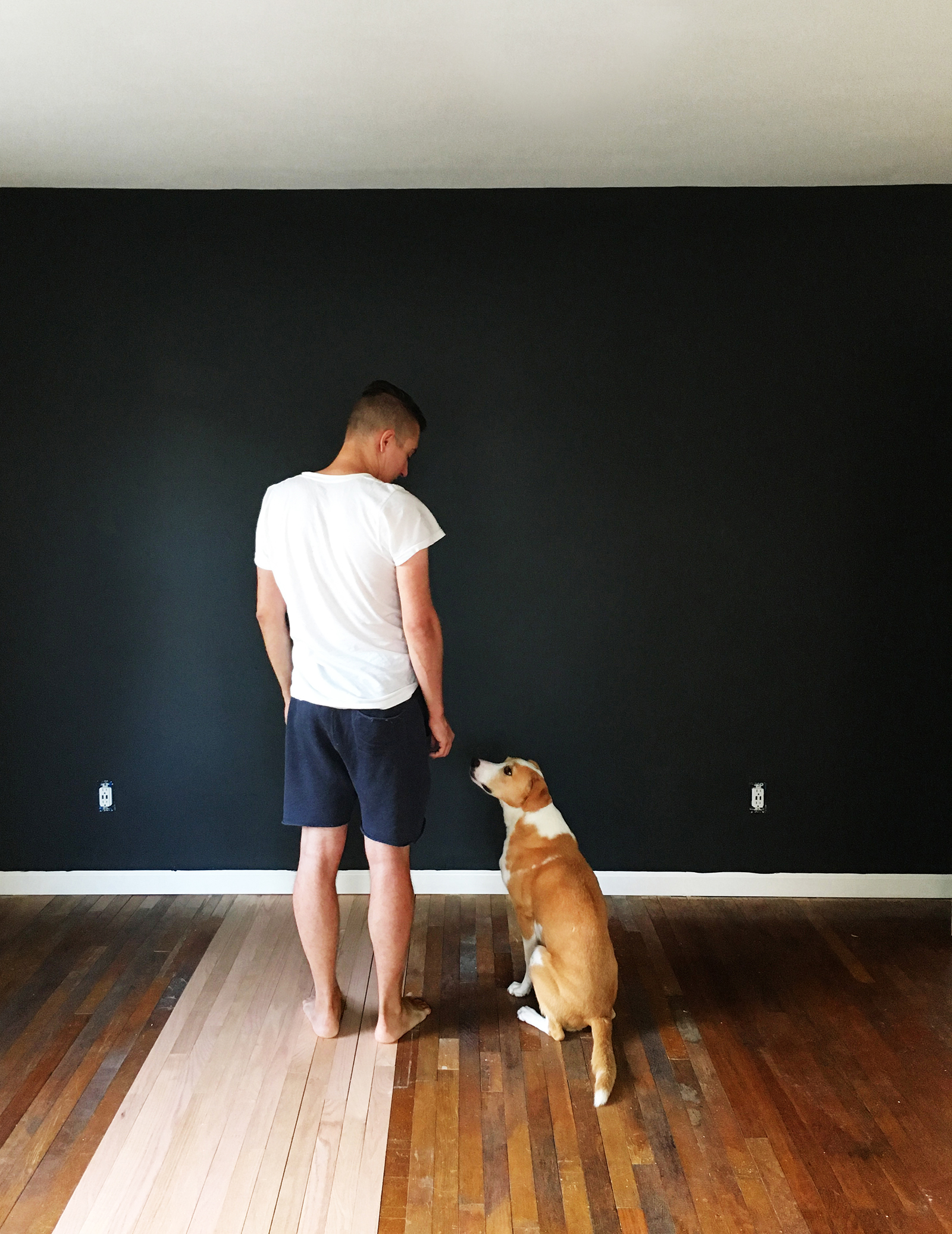 The darkest of dark navy wall turned out exactly as I pictured. Robert + Daisy approve.