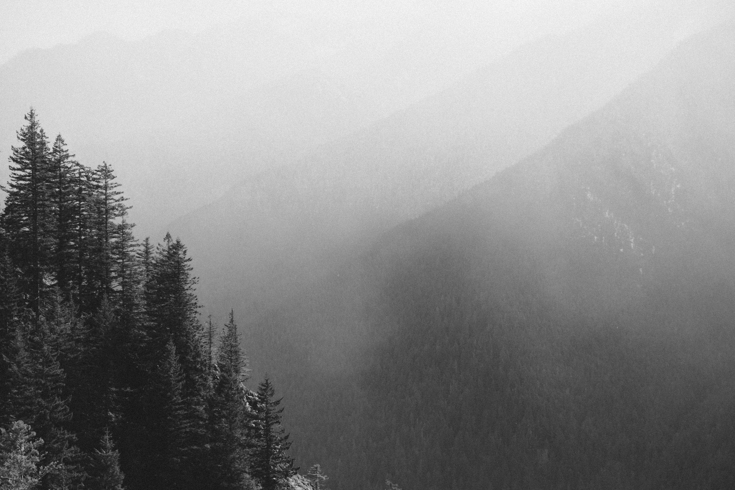 hikingPNW-0010.jpg