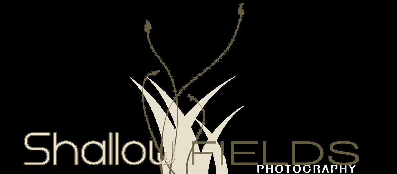 Shallow Fields Logo