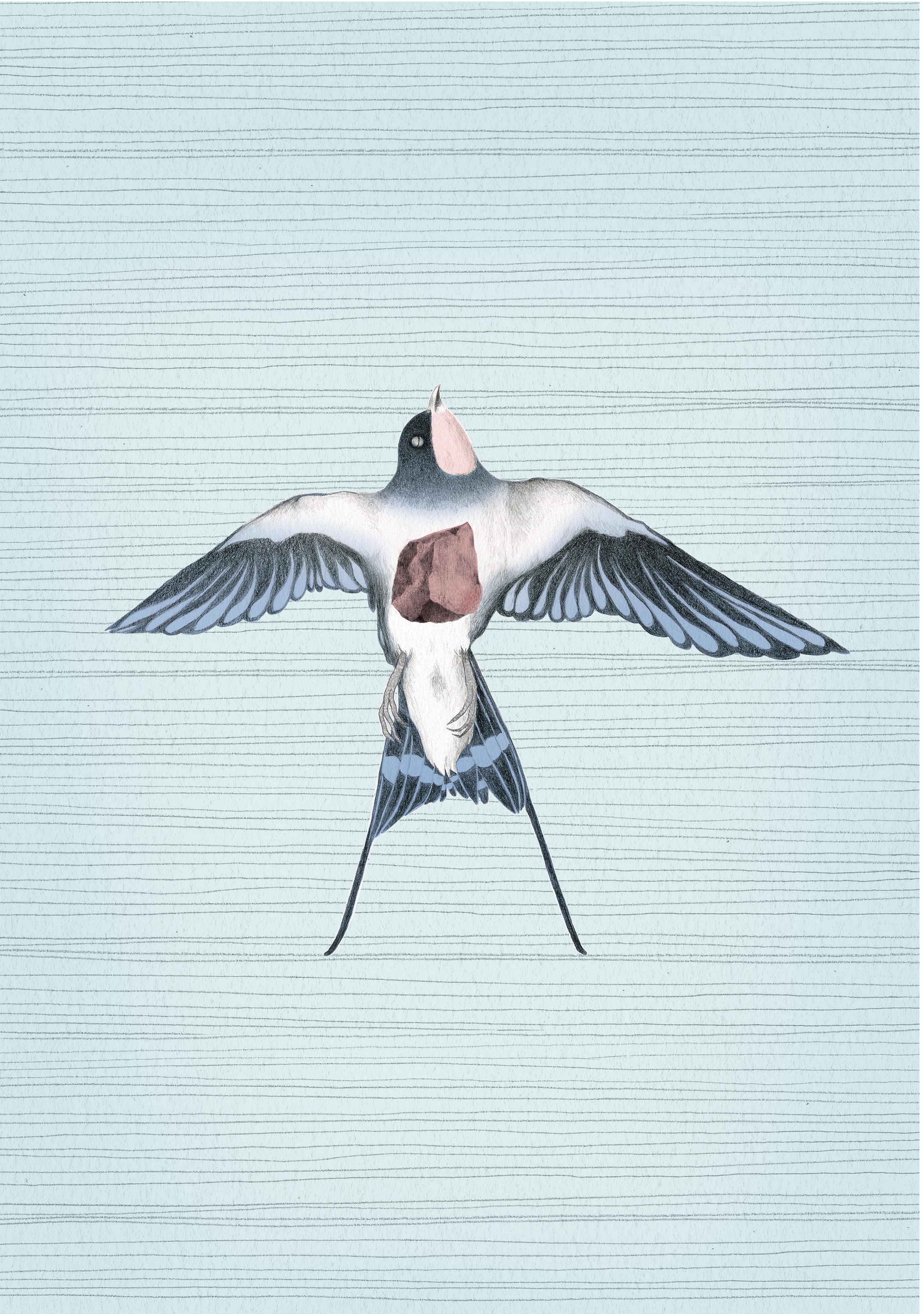 Ilustración para afiche cortometraje Golondrina