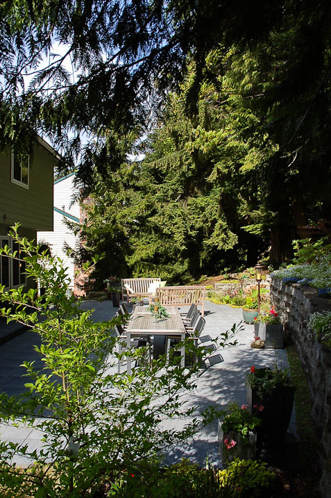issaquah-back-yard-paul-moon-design-landscape-architecture-6.jpg