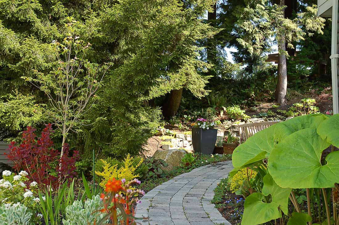 issaquah-back-yard-paul-moon-design-landscape-architecture-4.jpg