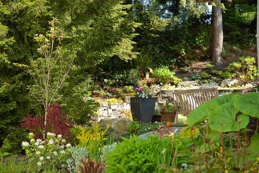 issaquah-back-yard-paul-moon-design-landscape-architecture-5.jpg