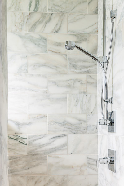 madison-park-bathroom-shower-seattle-paul-moon-design-architecture.jpg