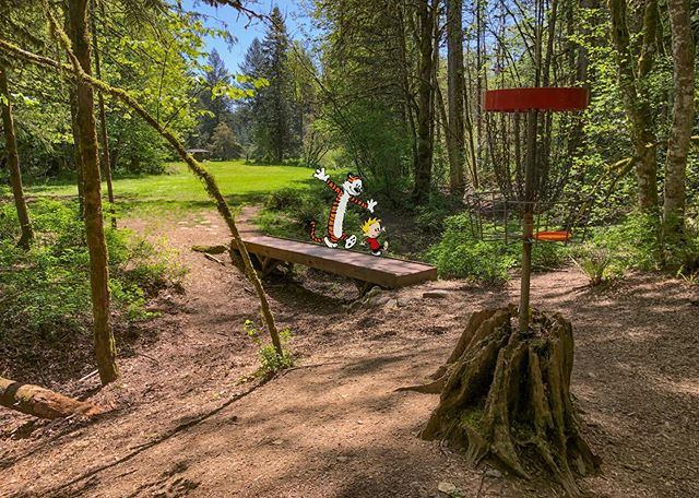 More from my #milomciver #discgolf trip. Joe forgot to shave before we left, so he was a lil fuzzy by the end. . . . #riverbenddiscgolfcourse #oregondiscgolf #thediscgolfpodcast #calvinandhobbes #discgolfbasket #throwstuffatstuff