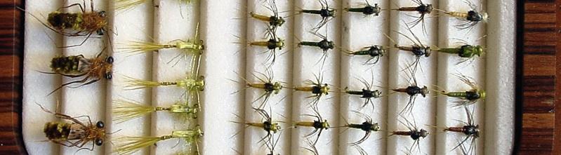 Panorama-dry fly wood box.jpg