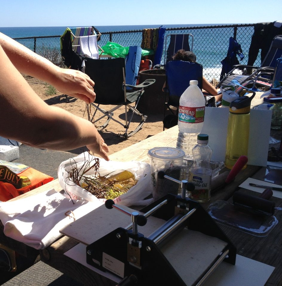 My picnic table printing set up and seaweed from my morning swim.