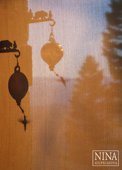 The Shadow Theater (North American Humming Bird)