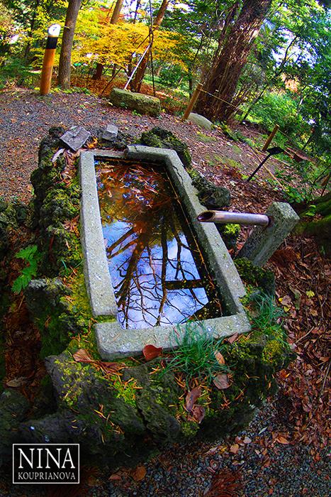 Reflections at Takao-san (Mt. Takao, Japan)