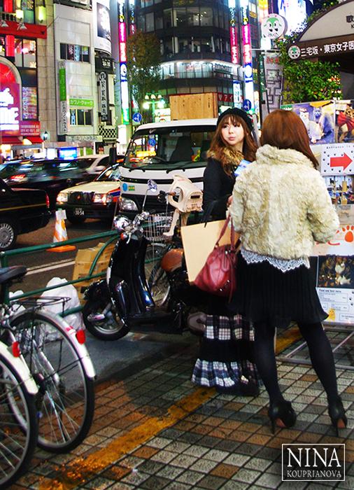 The Cat Ladies of Tokyo