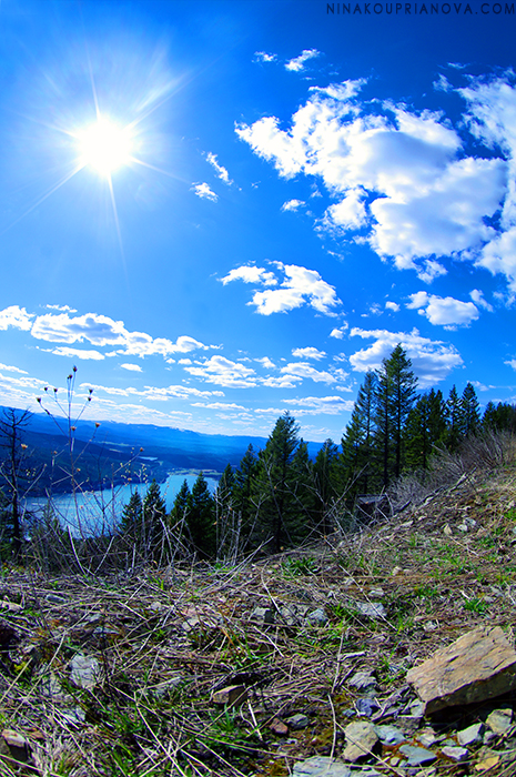 pwn spring in the mountains 700 px.jpg