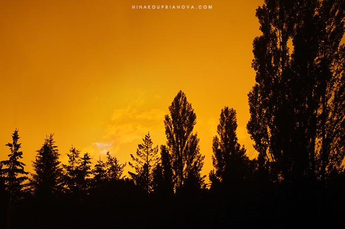 sunset 1 sm with url.jpg