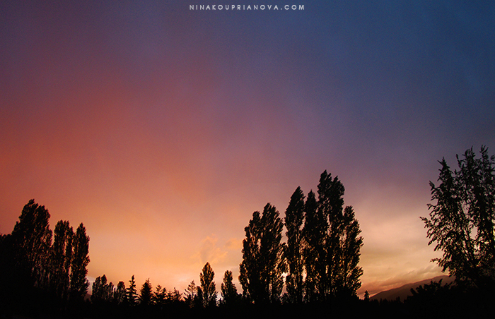 sunset 5 sm with url.jpg