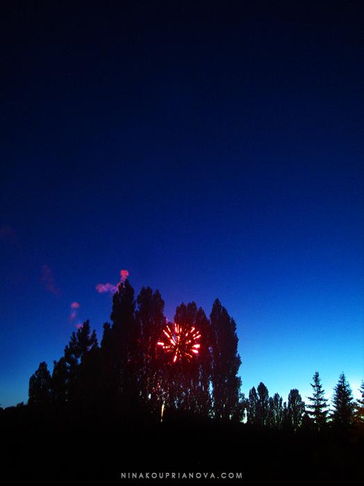 fireworks 5 700 px with url.jpg