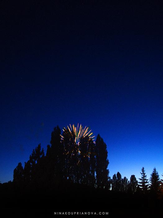fireworks 9 700 px with url.jpg