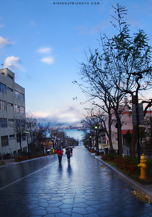hakodate after the rain vertical 750 px with url.jpg