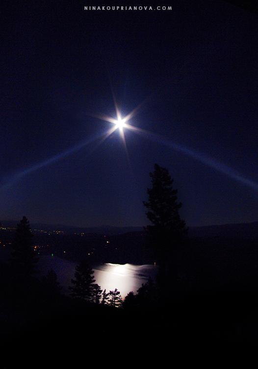moonlit night 1 750 px with url.jpg