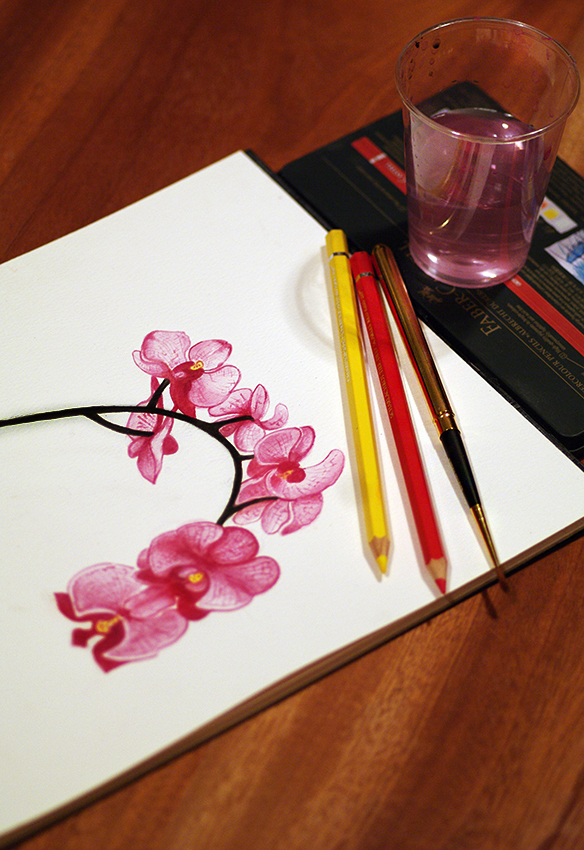 orchids painting 1 850 px.jpg