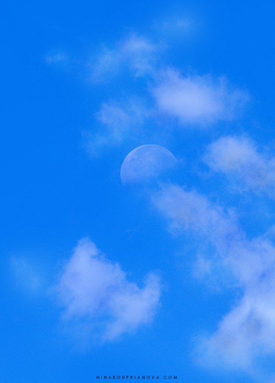 moon at noon 2 750 px with url.jpg