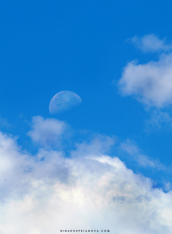 moon at noon 1 750 px with url.jpg