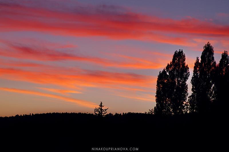 sunset sep 13 b 800 px url.jpg