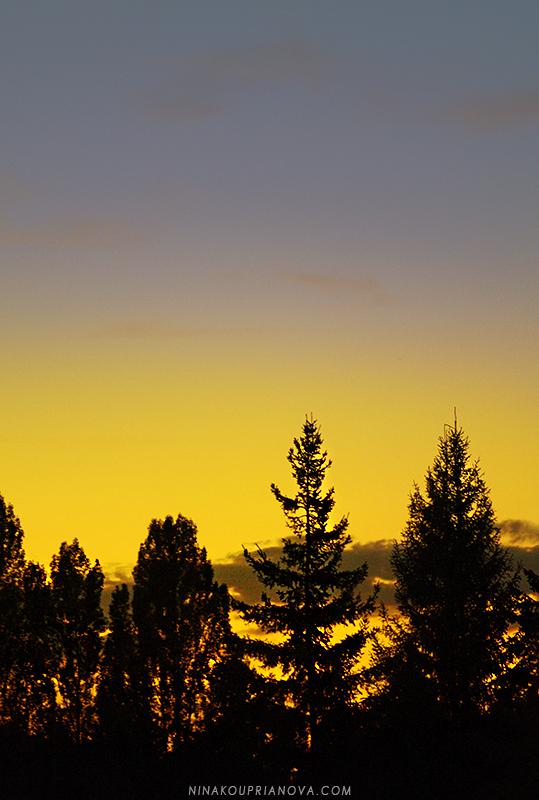 sunset sep 13 c 800 px url.jpg