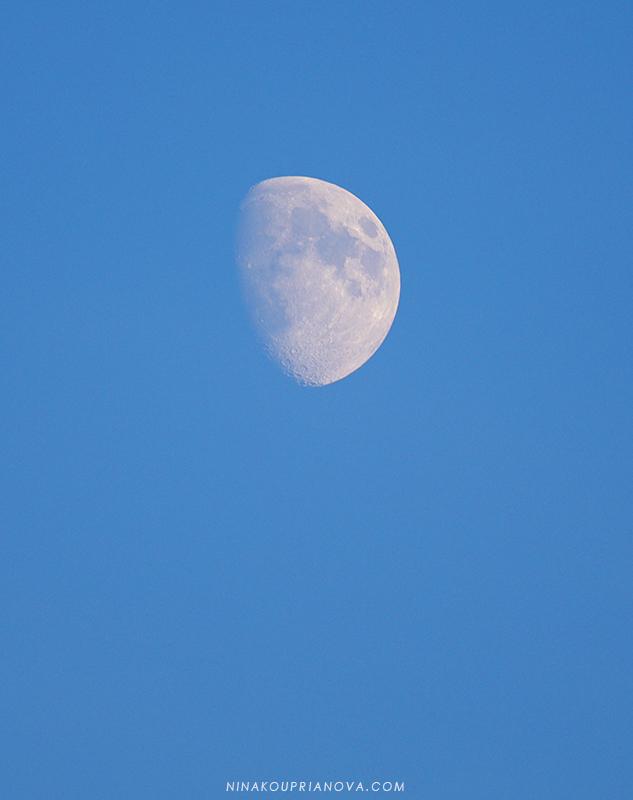 blue moon sep 14 800 px url.jpg