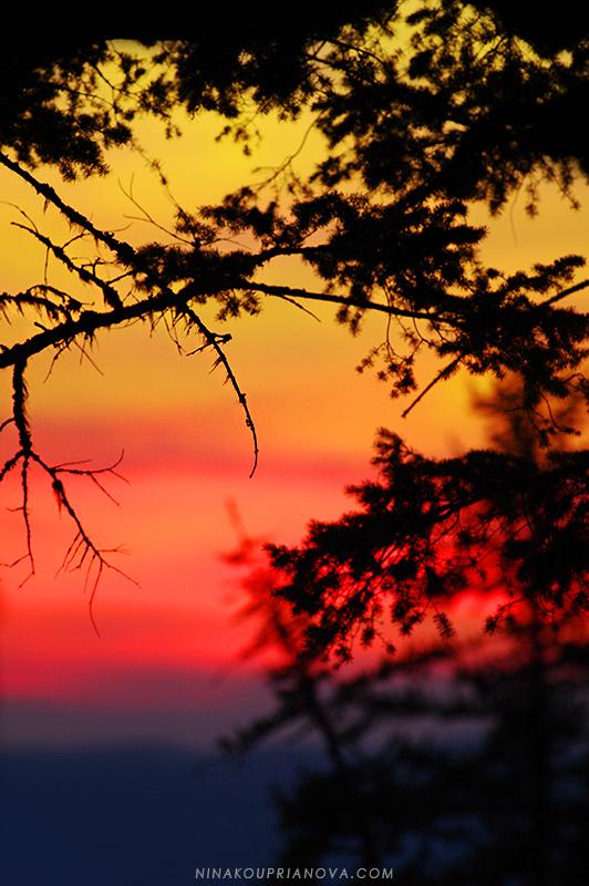 sunset watercolor 800 px url.jpg