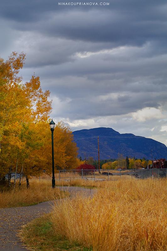 autumn 2012 800 px url.jpg