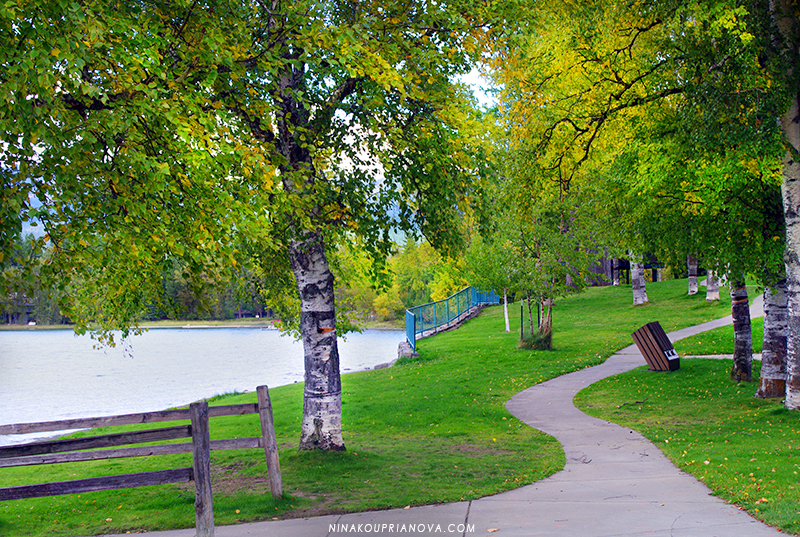 autumn trees at lake 800 px url.jpg