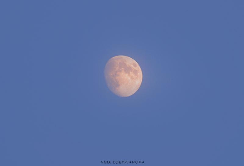 moon closeup oct 15 800 px url.jpg