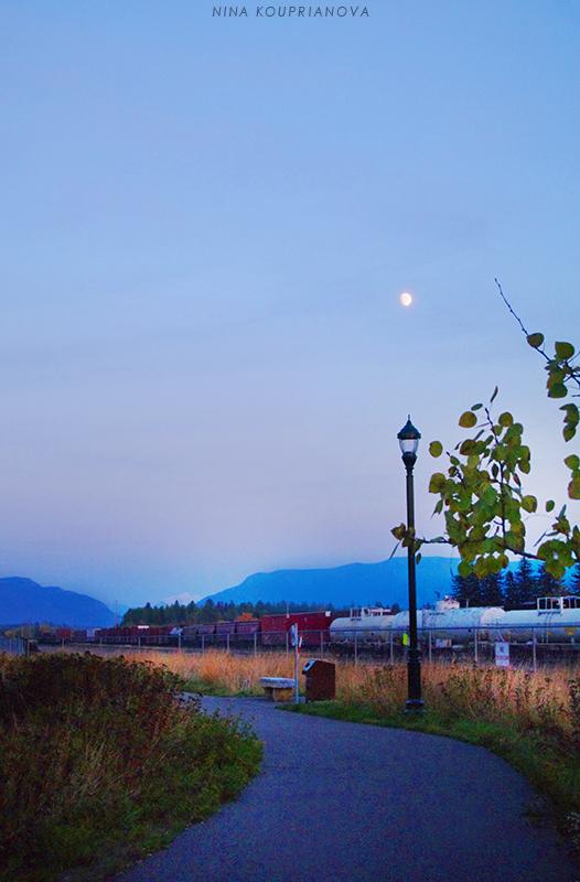 moon over street lamp v2 800 px url.jpg