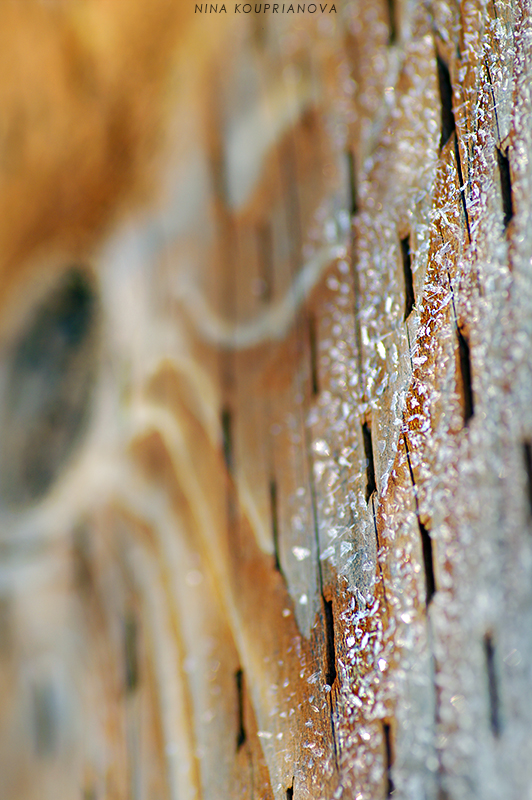 frost on wood 800 px with url.jpg
