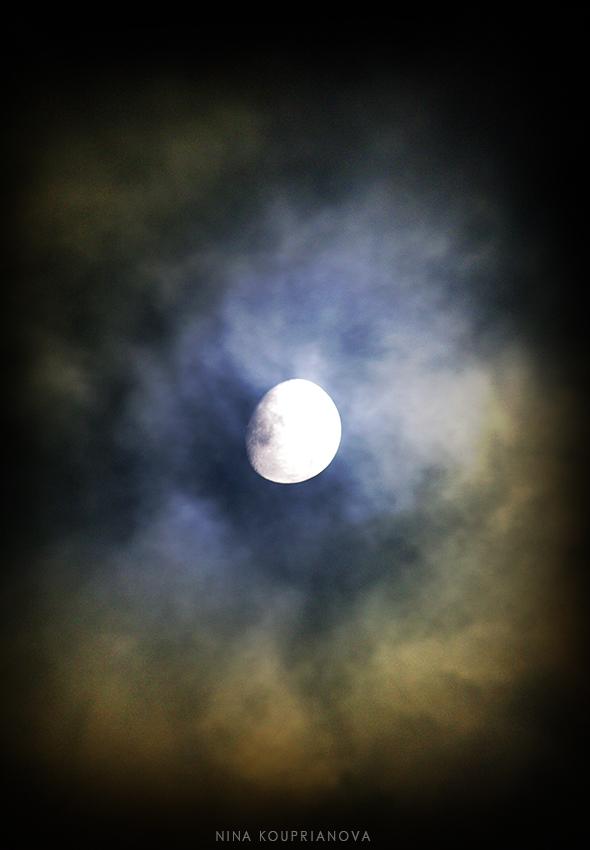 moon nov 1 850 px url.jpg