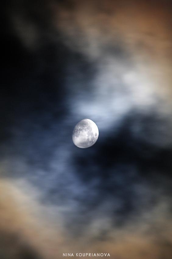 moon nov 12 850 px url.jpg