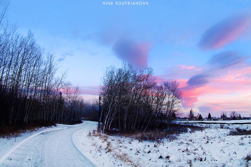 winter road 2 850 px url.jpg