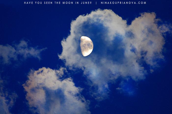 june moon 2 700 px with url.jpg