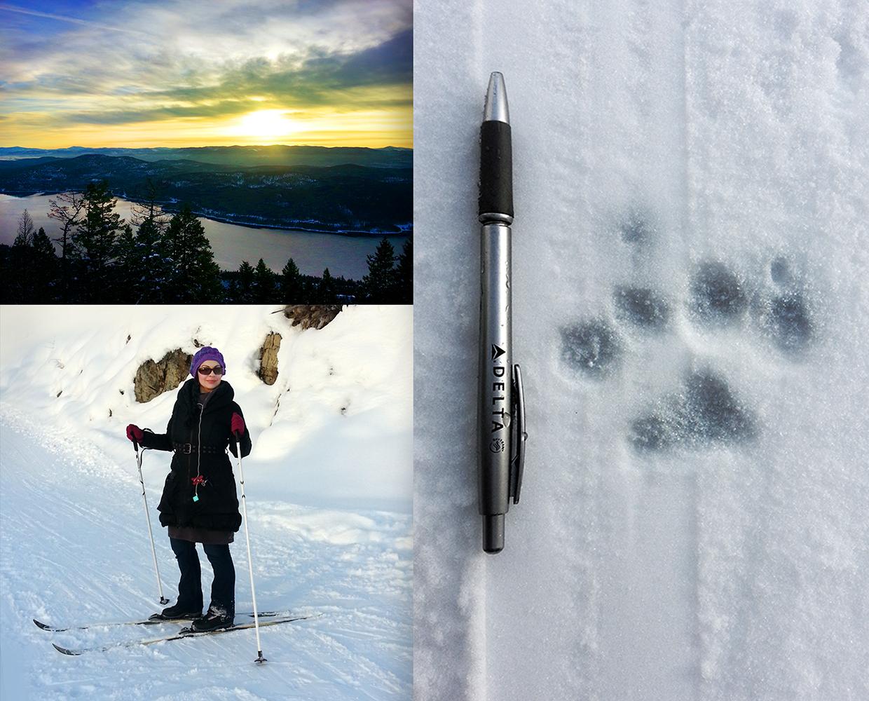ski combined 1000 px.jpg