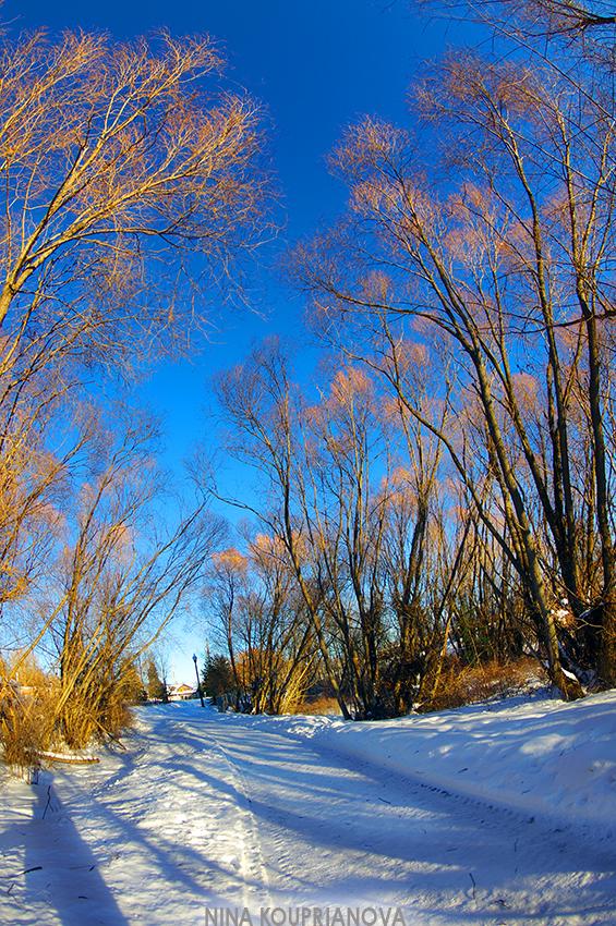 cold walk 2 850 px url.jpg